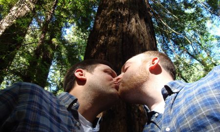 gay-marriage-1571621_960_720